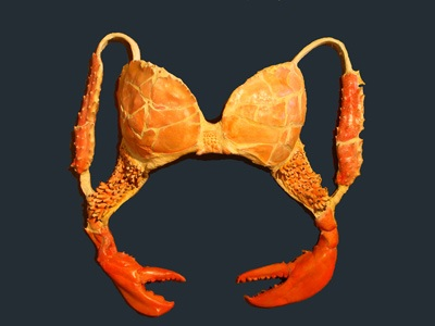 Remember Lady Gaga's 'meat-dress'? Here's the Crab Bra! ~ HipsterApproved.net